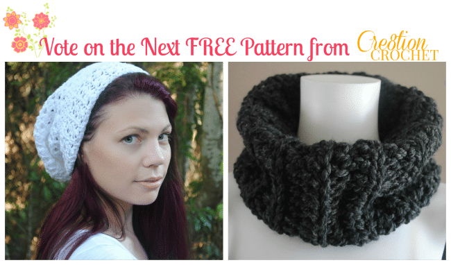 vote for your next Cre8tion Crochet FREE pattern