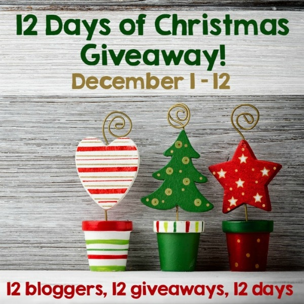 12 Days of Christmas Crochet Blog Giveaway
